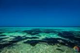 Playa del Corralejo - Fuerteventura - Islas Canarias